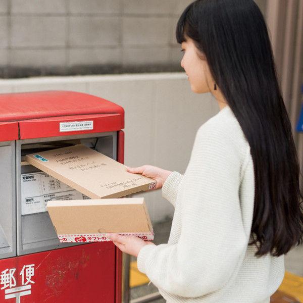 ヘッズ 無地コンパクト宅配ボックス-2 M-TBX2 1セット(300枚:20枚×15パック)(直送品)