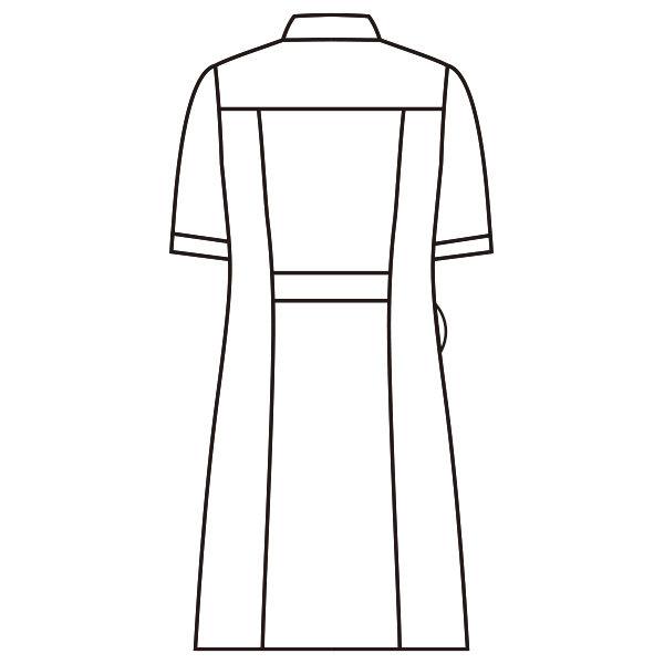 ラウンドカラーワンピース 半袖 73-1930 ホワイト LL ナースワンピース (直送品)