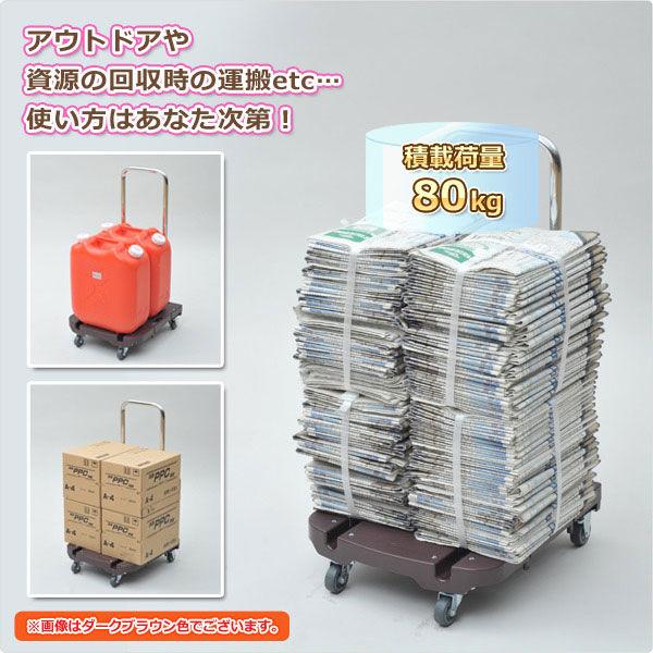 YAMAZEN お手軽CARRY (ダークブラウン) OTG-E50DB (直送品)