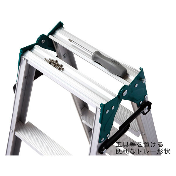 Hasegawa(長谷川工業) アルミ合金 はしご兼用脚立幅広ステップ 6段 (6尺 170cm) RS2.0-18 1台 (直送品)