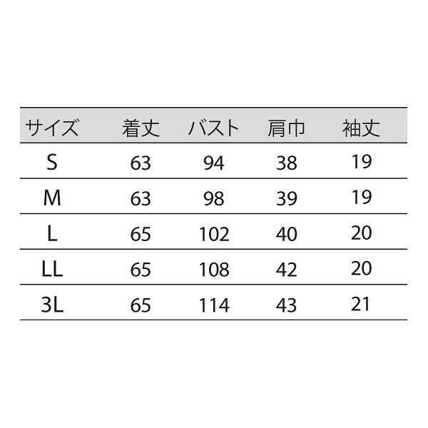 住商モンブラン レディスニットシャツ オフ白×アメリブルー M LW202-13 (直送品)