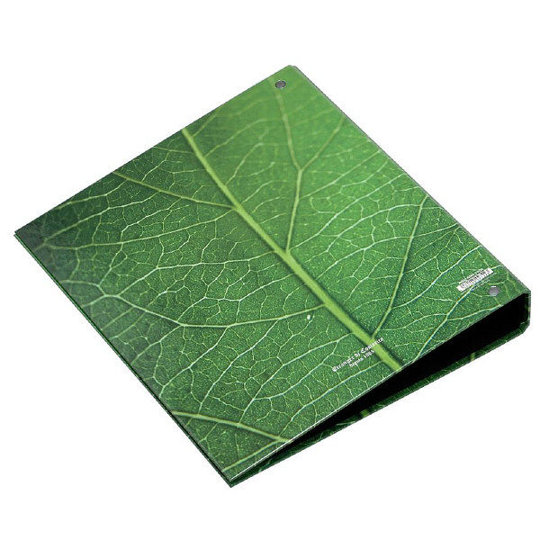 エトランジェ・ディ・コスタリカ A4 4Hファイル[GREEN]No2 GRNー10ー02 3冊 (直送品)