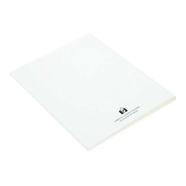 エトランジェ・ディ・コスタリカ A4クリアファイル20[SOLID]ホワイト SLDー71ー01 3冊 (直送品)