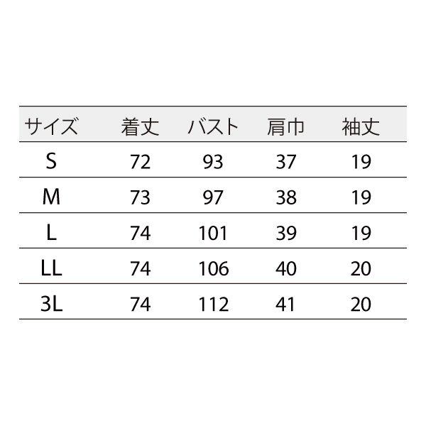 住商モンブラン ナースジャケット 医療白衣 レディス 半袖 白/ブロンズ 3L 73-2202 (直送品)