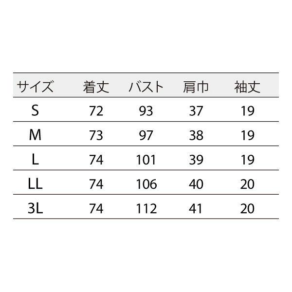 住商モンブラン ナースジャケット 医療白衣 レディス 半袖 白/シルバー 3L 73-2206 (直送品)
