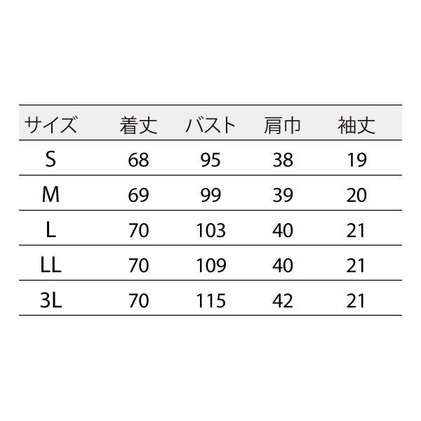 住商モンブラン ナースジャケット 医療白衣 レディス 半袖 白/シルバー 3L 73-2226 (直送品)