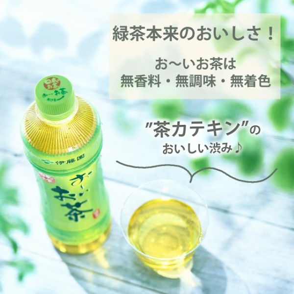 伊藤園 お~いお茶 緑茶紙パック 1L