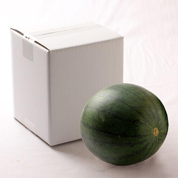 熊本県産 夢黒小玉すいか  1玉約2kg