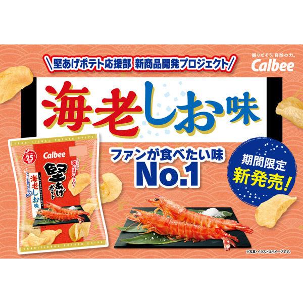 堅あげポテト海老しお味 60g 3袋