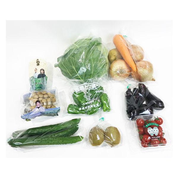 常備野菜10種BOX+フルーツおまけ付き