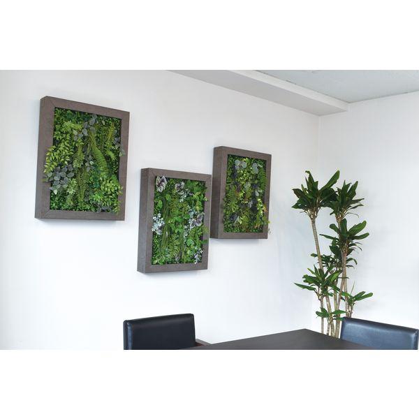 松村工芸 イージーデコフレーム 壁掛けインテリアグリーン L A-4 196-20011-4 1個(直送品)