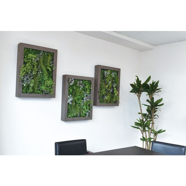 松村工芸 イージーデコフレーム 壁掛けインテリアグリーン L A-5 196-20011-5 1個(直送品)