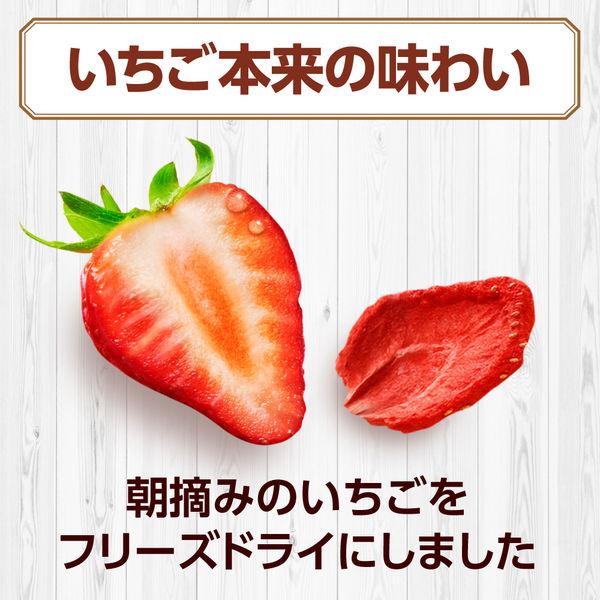 フルーツグラノラ朝摘みいちご600g2袋
