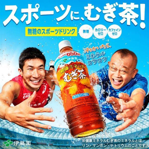 健康ミネラルむぎ茶 2.0L 6本