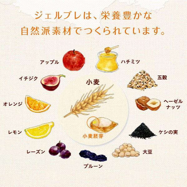 ジェルブレ 大豆&オレンジビスケット
