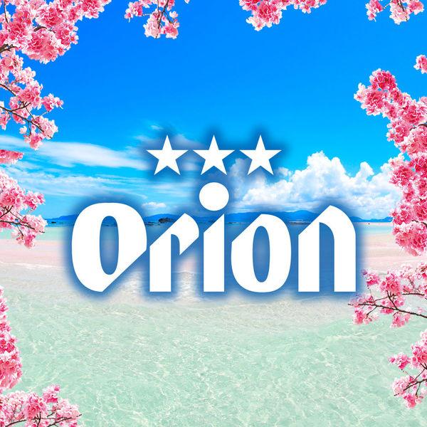 オリオンいちばん桜  6本