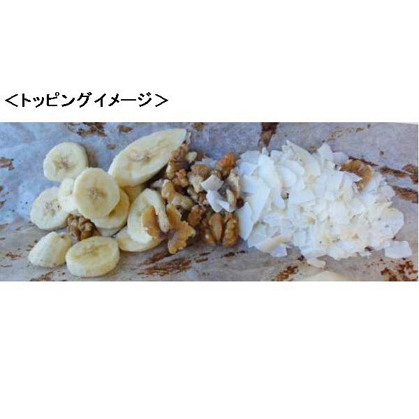 グレンディーココナッツチップス
