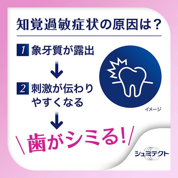 薬用シュミテクト 歯周病ケア 2本