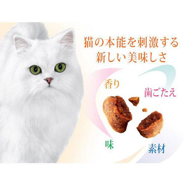 限定モンプチボックス サーモン風味×3