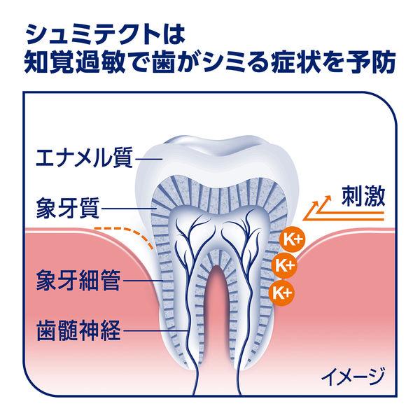 薬用シュミテクト 歯周病ケア 増量品2本