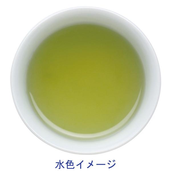 お手軽急須用緑茶ティーバッグ50バッグ入