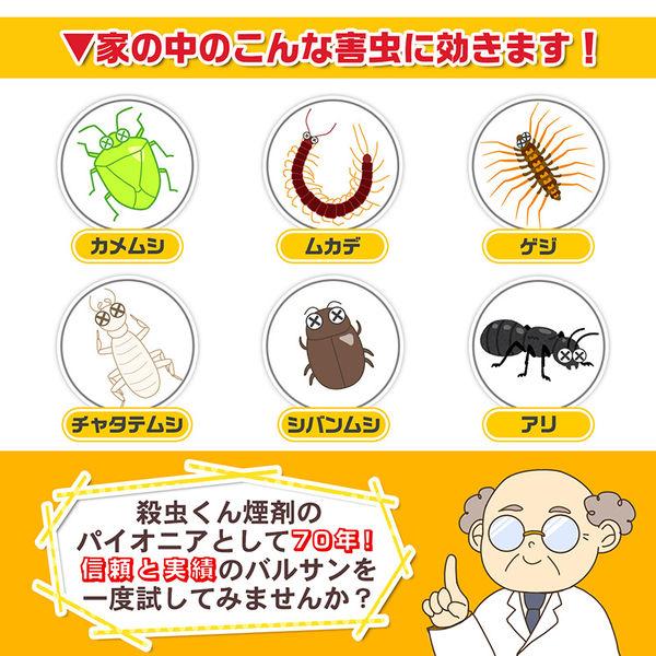バルサン いや~な虫 6~10畳用