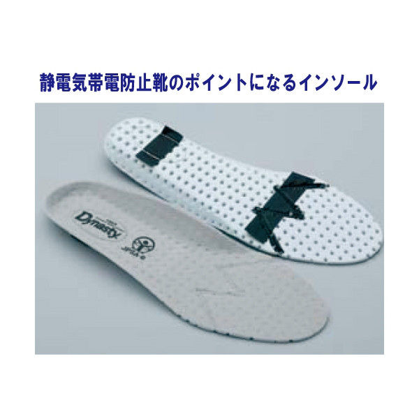 ドンケル R9209032017 静電気帯電防止靴 ダイナスティ SDー11 白29.0cm 1足 (直送品)