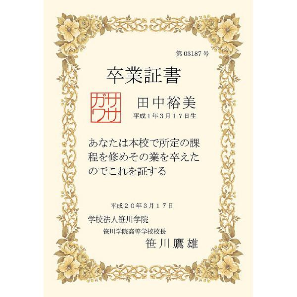 タカ印 洋柄賞状用紙 B5判 縦横兼用 10-252 1袋(10枚入)