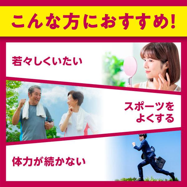 DHC DHC DHC コエンザイムQ10 20日分 包接体 袋40粒