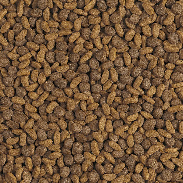ピュリナワン 子ねこ用チキン2.2kg