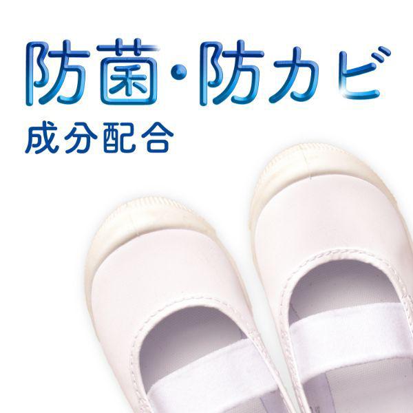 消臭・抗菌靴スプレー 無香性