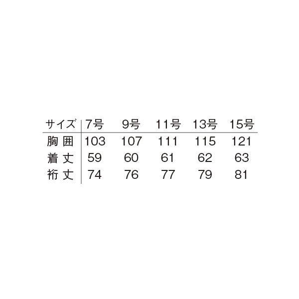 明石スクールユニフォームカンパニー レディースブルゾン スカイブルー 11 UN1310-6-11 (直送品)