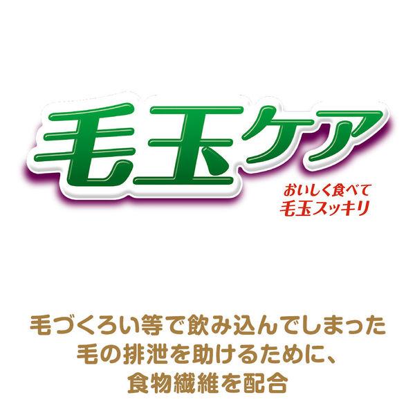 銀のスプーン吐き戻し軽減 お魚お肉野菜