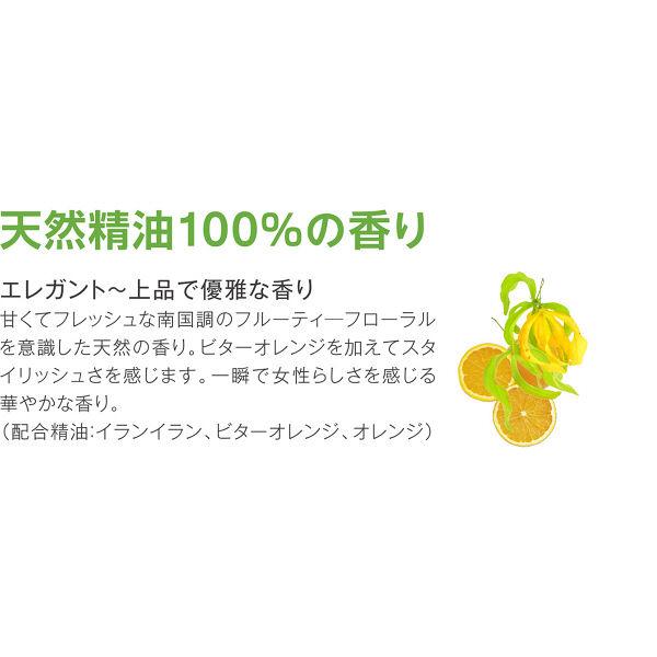 野菜食器用洗剤エレガントギフト本体+詰替