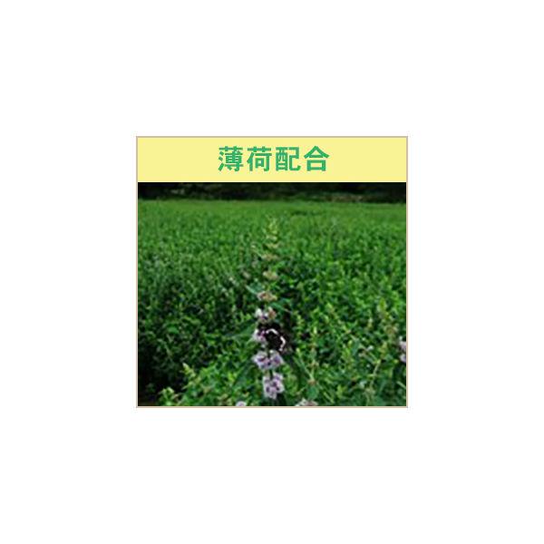 菊花線香 丸型ミニサイズ (32巻入)