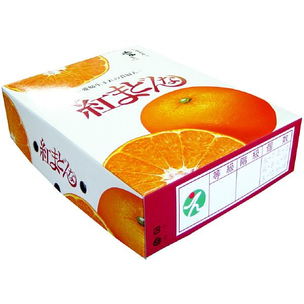 愛媛県産 紅マドンナ 約3kg
