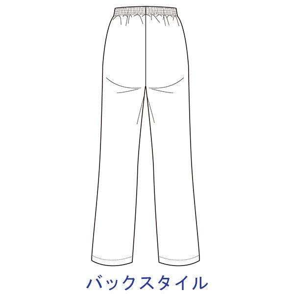 大真 透けない白衣 レディスパンツ NP200 ホワイト M 医療白衣 1枚 (直送品)