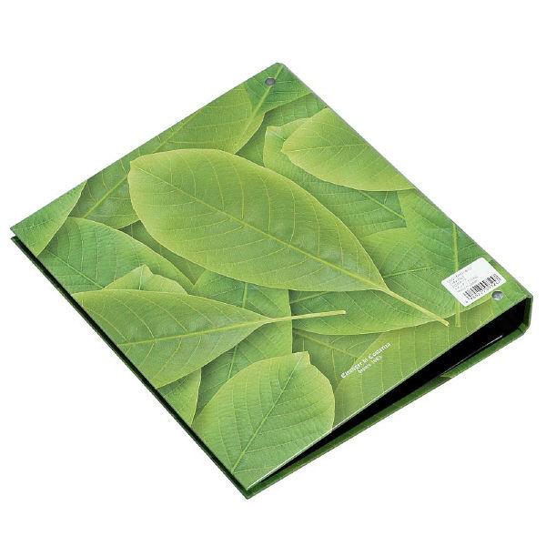 エトランジェ・ディ・コスタリカ A4ポケットファイル[GREEN]No1 GRNー18ー01 3冊 (直送品)