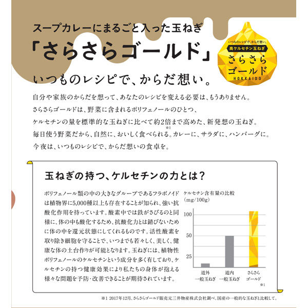 北海道の玉ねぎまるごとスープカレー 1袋