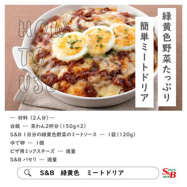 1日分の緑黄色野菜のミートソース 1袋