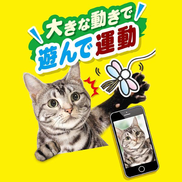 CAT TOY 猫用 キラキラトンボ