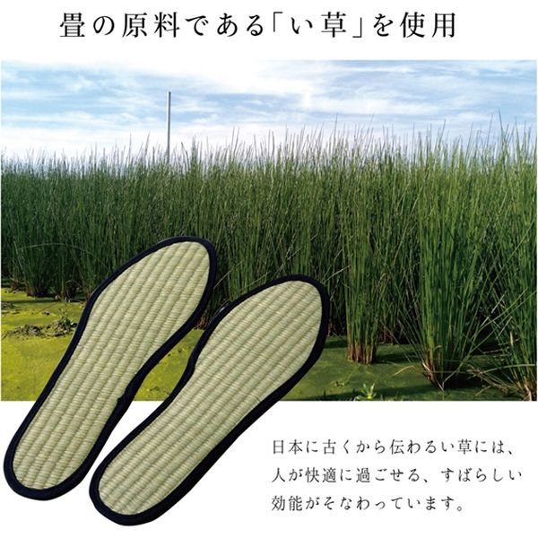 インソール メンズ 消臭 抗菌 『い草インソール』 ネイビー 約27cm(直送品)
