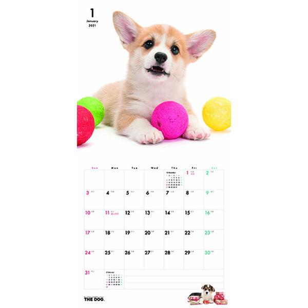壁掛カレンダー DOG 205×185
