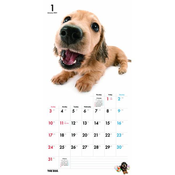 壁掛カレンダー DOG 325×300