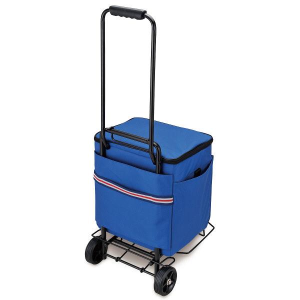 ソフトクーラー 約20L ブルー