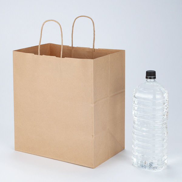 丸紐手提袋 320×350×210 茶