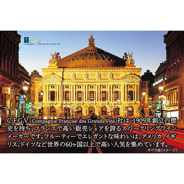 オペラ・ブリュ200ml×2本