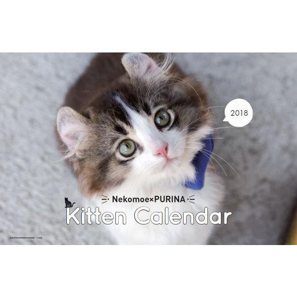 福袋ピュリナワン&モンプチ カレンダー付
