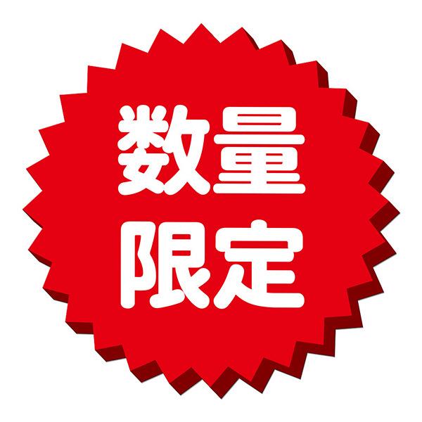 【アウトレット】ボールド 香りのサプリインジェル 部屋干し用 詰め替え 超特大 1.12Kg 洗濯洗剤 P&G