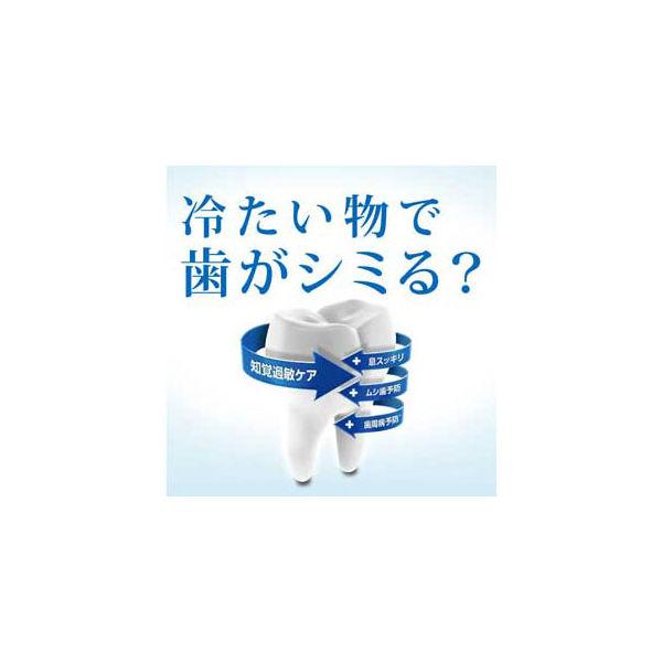 薬用シュミテクト ホワイトニング 増量品
